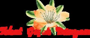 Tokat Çiçek Dünyası-Çiçek Siparişi